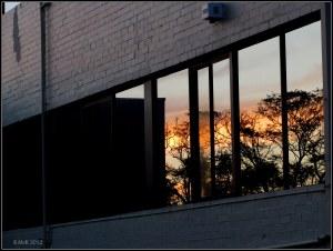 Reflections_November_13