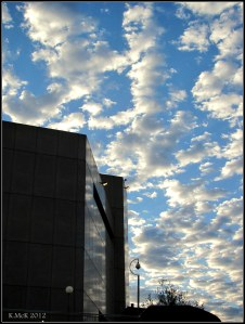 Reflections_November_9