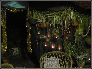 christmas courtyard_1