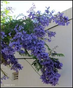 colour against a wall