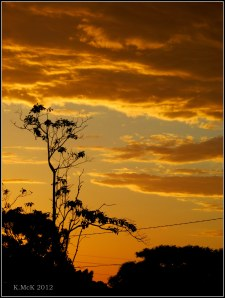sunsetty colours