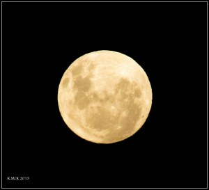 full moon and golden