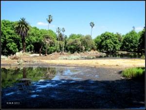 hyde park_the island