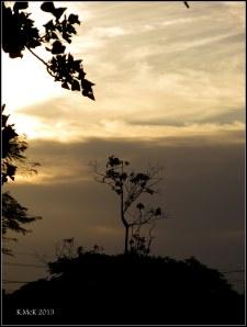 sunset_8
