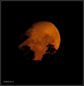 Easter Saturday moon_2