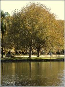 Hydepark_3