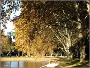 Hyde park_13