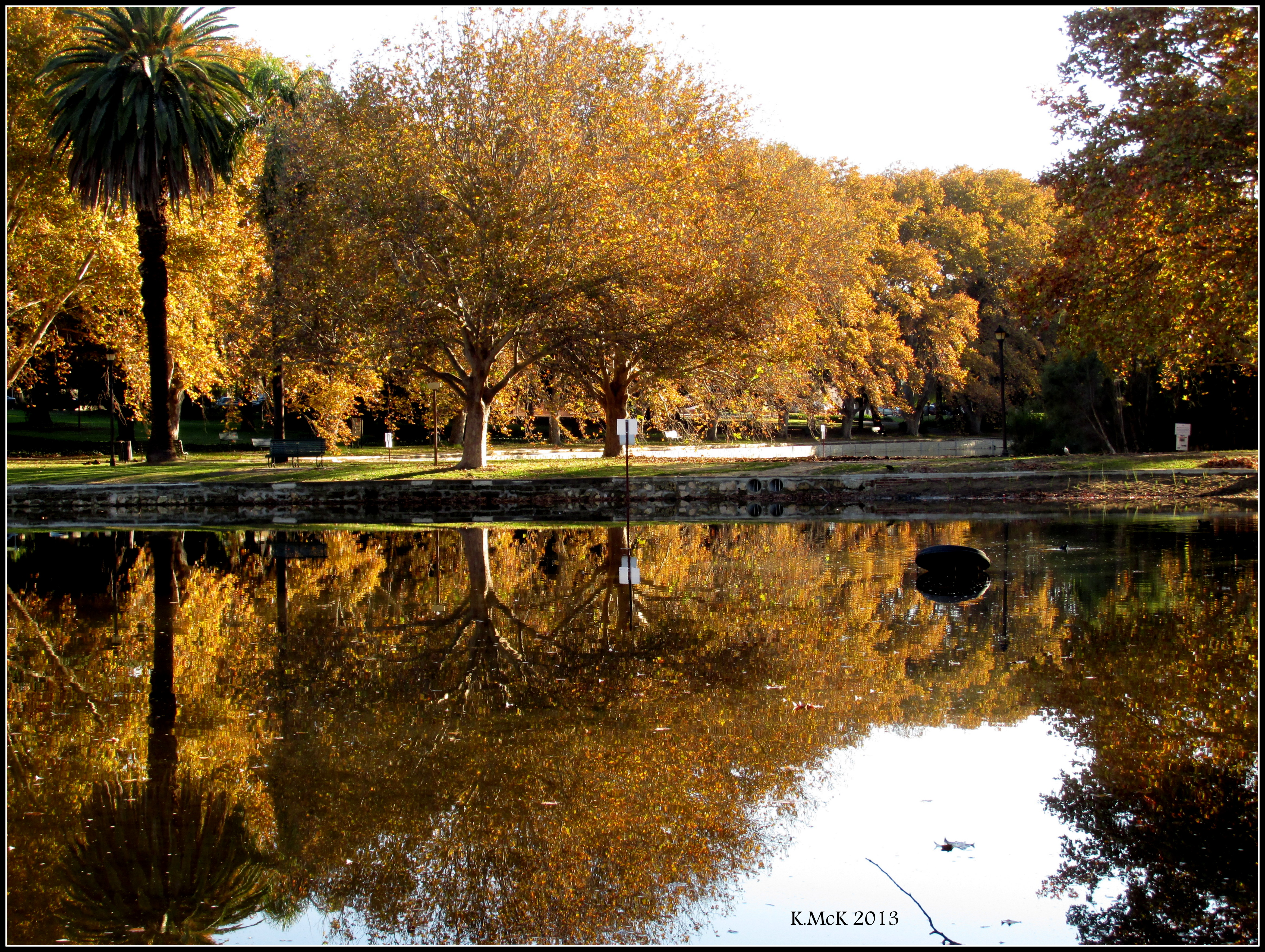 Hyde Park Autumn Hyde Park