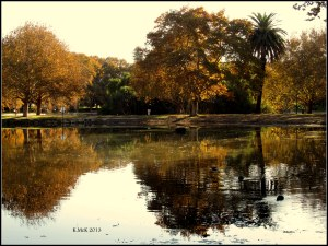 Hyde park_9