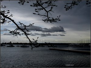 Matilda Bay_dark day_5