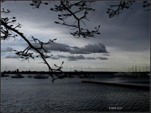 Matilda Bay_dark day_5