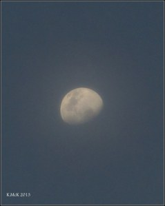 evening moon in cloud