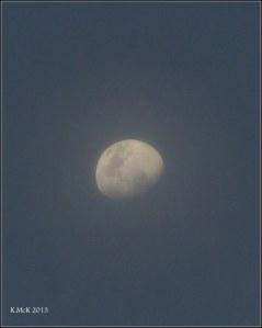 evening moon in cloud
