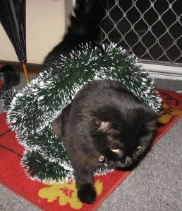 tinsel attack