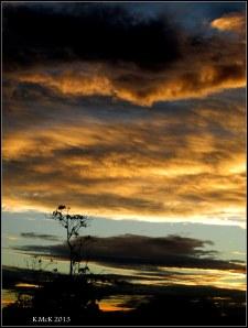 sunset_p_5