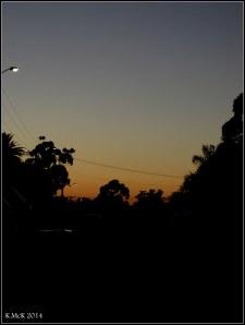 dawn_5