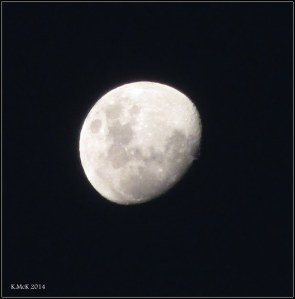 tonight's moon_1