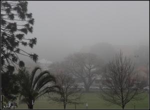 fog_10