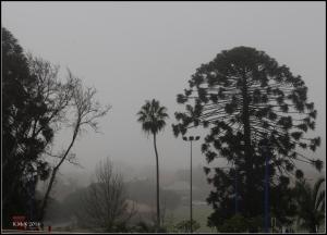 fog_11