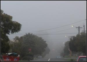 fog_6