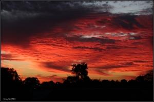 sunset_55