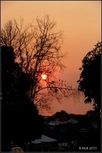 orange_9