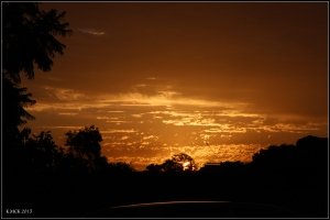 sunsetting_4