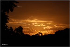 sunsetting_5