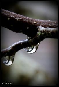 araluen_drops_11