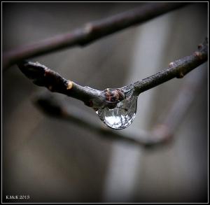 araluen_drops_16