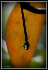 drops_10