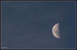 moon_24