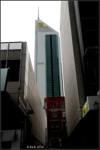 city_24