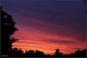 sunset_17
