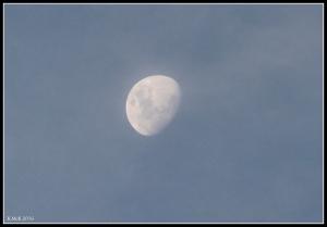 moon_5